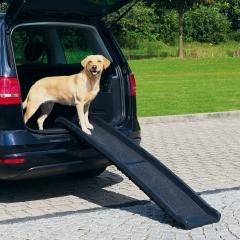 Hunde-Rampe, aufklappbar