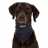 Insect Shield® Dog Loop XL