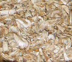 Garnelen 300 g