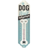 Thermometer Dog Walk Weather